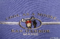 Cool as a Moose - Bar Harbor